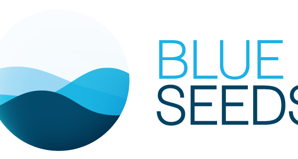 Logo BS couleur fond transparent_Original