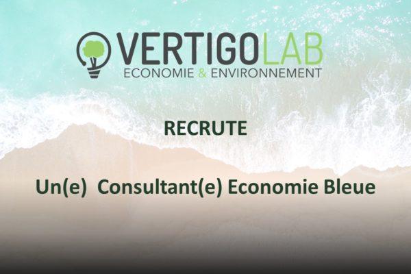 Consultant Eco Bleue