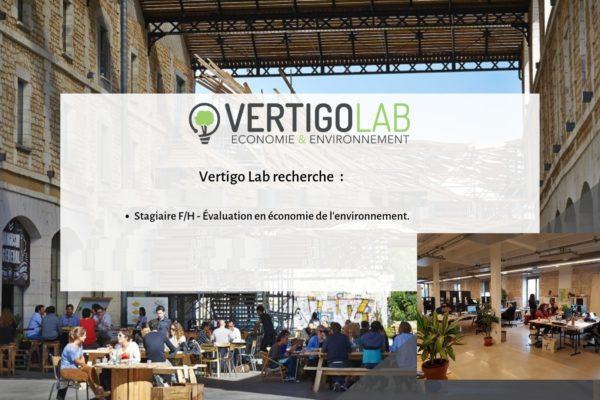 Offres stages Vertigo Lab